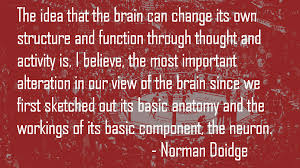 Finding Optimism and Positive Moods : The Neuroscience. Part 1.